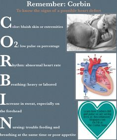 Remember CORBIN to learn the signs of a possible heart defect Infographic Nursing School Notes, Ob Nursing, Nursing Tips, Neonatal Nursing, Nursing Schools, Cardiac Nursing, Nursing Degree, Nursing Programs, Maternity Nursing