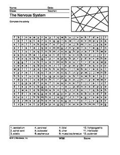 Urinary System Word Scramble Printable   Activities, The o'jays ...