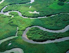 Biebrzański Park Narodowy, woj. podlaskie /   The National Park of the Biebrza River
