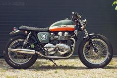 Bonneville T100 custom