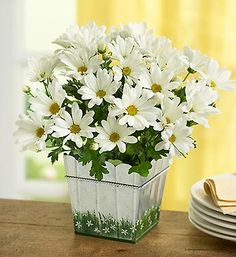PSA: Mother's Day is May 13! Big sale on 1800Flowers today: 20% off with Promo Code MOM25