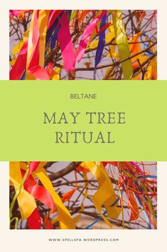 Beltane May Tree Ritual Wiccan, Pagan, She's A Witch, Celtic Druids, Solar System Crafts, Sabbats, Tarot Spreads, Beltane, Spring Recipes