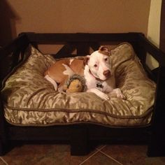 Recycle tile crate into stained dog bed :) My next project, just picked up the tile crate. :)