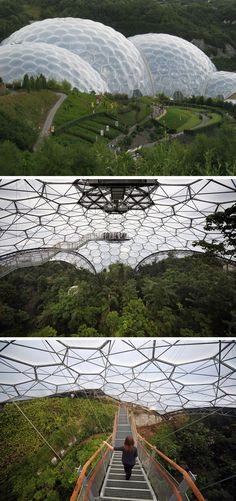 The Eden Project is a collection of giant biodomes in Cornwall, UK. Each domed garden houses a plethora of plants from all over the Earth, including the largest rainforest in captivity.