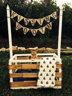 Dog kissing booth great fundraiser dogs pinterest kissing tdl kissing booth solutioingenieria Image collections