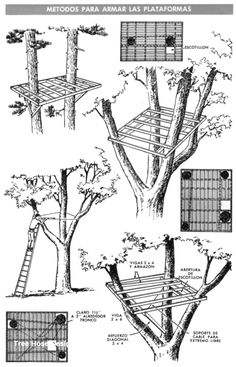Cool Tree House Ideas to Take Your Project to the Next LevelYou can find Tree house designs and more on our website.Cool Tree House Ideas to Take Your Project to the Next Level Beautiful Tree Houses, Cool Tree Houses, Pallet Tree Houses, Building A Treehouse, Treehouse Kids, Patio Trees, Tree House Plans, Diy Tree House, Cozy Backyard
