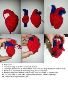 (4) Name: 'Crocheting : Human Heart Anatomical Crochet Pattern