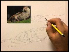 The Complete Drawing Course for Beginners with Ronald Swanwick, Part 4, is playing now on http://ArtistsNetwork.tv. In this art tutorial, Ronald teaches you drawing techniques for achieving values, placing highlights, how to draw a flower, animals, buildings, and more, step by step.