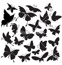 Set of silhouettes of butterflies vector