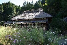 Yamato, Kumamoto, Japan. #japan # kumamoto