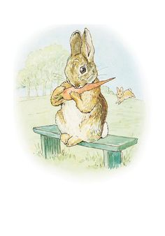 The Story of a Fierce Bad Rabbit - This is a nice gentle Rabbit. His mother has given him a carrot.