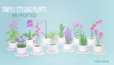 My Sims 4 Blog: Simply Styling Re-Potted Plants by MioSims