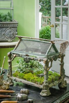 Beautiful Antique french faux bois terrarium from: Collections Sharing the Passion, a book by Jill Helmer, John Grady Burns, Kathy Stewart