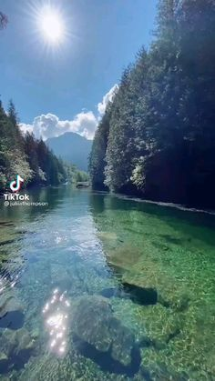 Nature Gif, Nature Videos, Wow Video, Budget Holidays, Funny Animals, Baby Animals, Video Photography, Amazing Nature, Adventure Travel