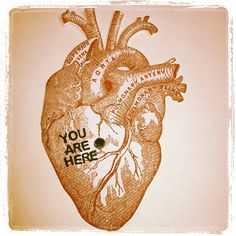 anatomical heart valentine plus DIY Video