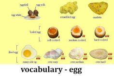 Forum | Learn English | Egg Vocabulary | Fluent Land