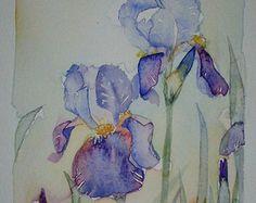 Watercolour painting of Irises original art by artist Amanda Hawkins 13 x 21cm decorative floral artwork ~ cottage garden flowers
