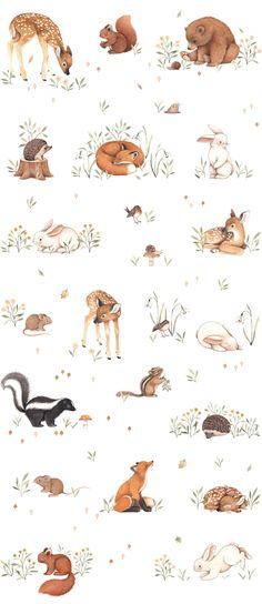 Nina Stajner - Nina Stajner // animal figures The Effective Pictures We Offer You About cartoon eyes A quality pi - Cute Drawings, Animal Drawings, Animal Illustrations, Cartoon Drawings, Cartoon Art, Cartoon Characters, Painting & Drawing, Watercolor Paintings, Rock Painting