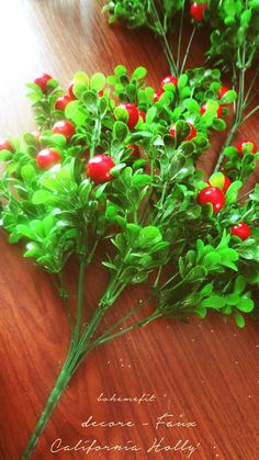 Holly berries perennial and bendy for altar or tree - ☽ ✧ - Δ - ✧ ☾ - Holly Berries, Perennials, Flora, Herbs, California, Vegetables, Magick, Diy, Bricolage
