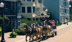visiting Mackinac Island - photo cred The Awesome Mitten Getaway Cabins, Lake Cabins, Summer Plants, Summer Flowers, Kayak Fishing Gear, Outdoor Planters, Outdoor Flowers, Best Ghost Stories, Michigan Travel