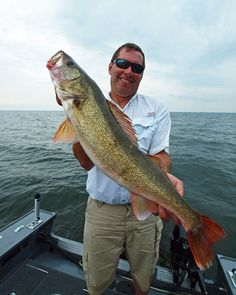 Where do walleye prowl during the fall and how do you catch them? Find out with these great fall fishing tips for walleye! - World Fishing Network Pike Fishing, Bass Fishing Tips, Walleye Fishing, Fishing Guide, Best Fishing, Kayak Fishing, Fishing Stuff, Fishing Chair, Fishing Basics
