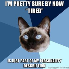 I'm pretty sure by now #Tired is just part of my #personality description. #ChronicIllnessCat #DisabilityNinjas #Disability #ChronicIllness #InvisibleIllness #ChronicPain #MentalIllness #MentalHealth
