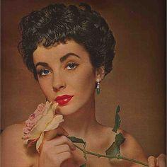 """My rose♥#Elizabethtaylor"""