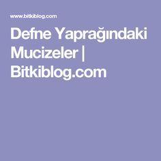 Defne Yaprağındaki Mucizeler | Bitkiblog.com