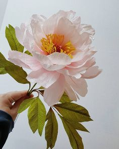 Weekend housekeeping ...and a notice that Castle in the Air has a single spot left for a second Tree Peony Class on Thursday, April 20th. They've added 'spillover' sessions for Magnolia and Orchids as well.  Please call @castleintheairshop (510) 204-9801 for details.