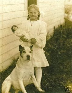 historical pit bull with child