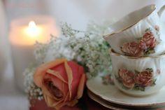 Aiken House & Gardens: The Rose