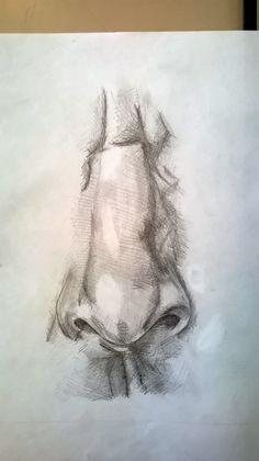Studio di un naso, matita - Nose study, pencil