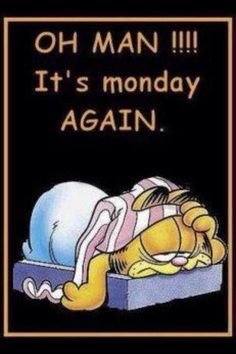 Oh Man Its Monday Again monday good morning monday quotes good morning quotes happy monday funny monday quotes monday quote happy monday quotes good morning monday Garfield Pictures, Garfield Quotes, Garfield Cartoon, Garfield And Odie, Garfield Comics, Funny Pictures, Garfield Monday, Monday Memes, Monday Quotes