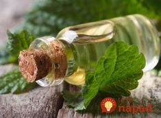 This blend of essential oils can help with pain relief when afflicted with shingles. Browse essential oil recipes for wellness from Aromatics International. Melissa Essential Oil, Buy Essential Oils, Essential Oils For Headaches, Chamomile Essential Oil, Melissa Oil, Oil For Headache, Diy Lotion, Herbal Oil, Herbalism