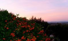 Le ciel de Montesquieu-des-Albères aujourdhui