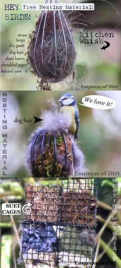 Offer safe nesting materials for birds - it's fun to watch and they may nest near your garden