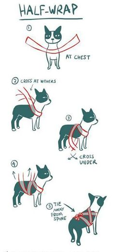 Wrap to soothe animals during thunderstorms, fireworks, etc.
