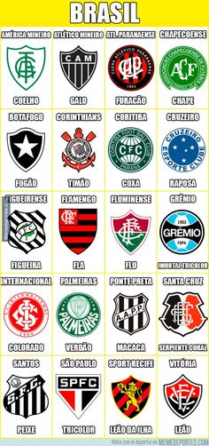 Club crests of Brazil. Fla Flu, Badge, Fifa, European Soccer, Football Fashion, Everton Fc, Sport Football, Graphic Design Posters, Soccer Players