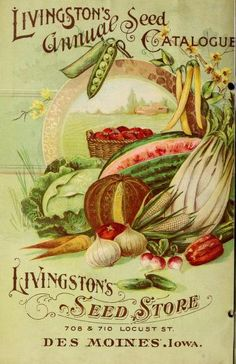 Back cover of 1899 seed catalogue ~ fruit and vegetables. 1899.