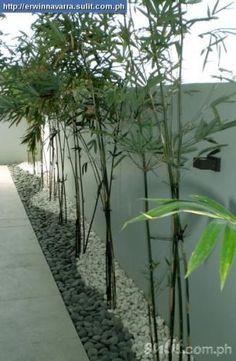 river rocks in the bamboo planter box