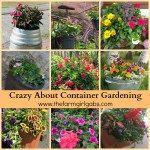Five Perennials To Grow In Your Cut Flower Garden - The Farm Girl Gabs