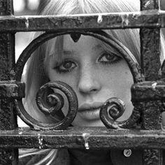 Marianne Faithfull in 1972