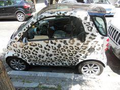 love love love this smart car!