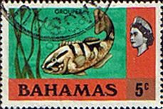 Postage Stamps Bahamas 1971 Nassau Grouper SG 363 Fine Used SG 361 Scott 317 Stamps For Sale. Take a look! Buy it Now