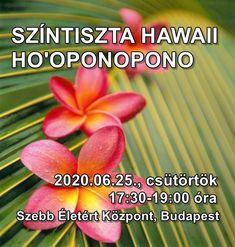 Az élet lehet tiszta Hawaii. Nem problémáktól mentes, hanem a problémák ellenére boldog és teljes. Ha nyitottak vagyunk, ha be merjük engedni a csodákat az életünkbe, a siker garantált.  Színtiszta hawaii Ho'oponopono, néhány alapeszköz, amiket csak a tanfolyamainkon tanítunk, és természetesen könyvbemutató.  Szebb Életért Központ, 1087 Budapest, Fiumei út 4. Belépő: 1.500 Ft, 14 éves korig ingyenes. Jelentkezés: hawaii@hooponoponoway.hu Csak visszaigazolt regisztrációval. Budapest, Plants, Plant, Planets