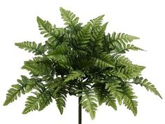 Fill your DIY bouquets and centerpieces with artificial greenery to give your designs a full look. Check out this gorgeous dark green leather leaf fern bush that is perfect to add rich color and textu