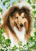 Collie St. Patrick's Day Garden Banner - Decorating a Garden for St. Patrick's Day. Wow! Love collies, love St. Patty's Day!