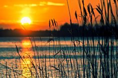Lago, Palhetas, Pôr Do Sol