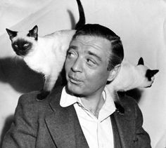 Peter Lorre and a pair of Siamese cats