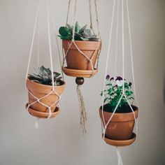 DIY some macrame plant hangers in 10 minutes